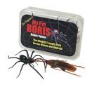 Magic Spider Pro-Pack My Pet Boris